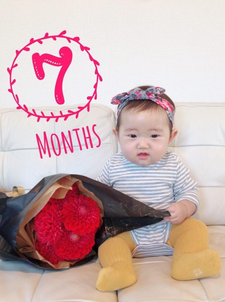 7ヶ月ベビー