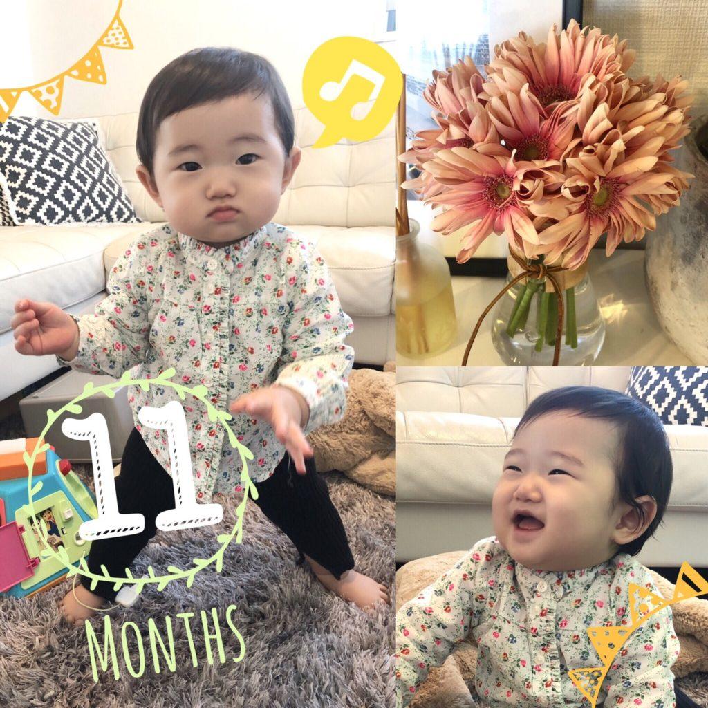 11ヶ月ベビー