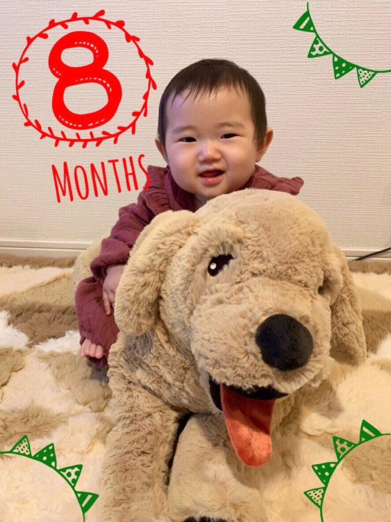 8ヶ月ベビー